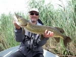 Power Fishing-ul în pescuitul la ştiucă